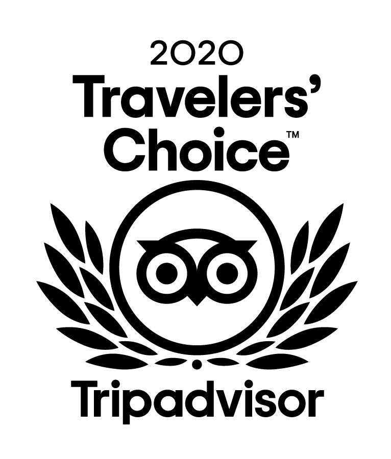 2020 Traveler's Choice Award